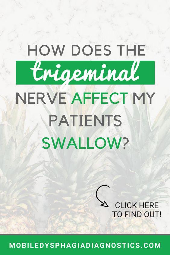 Medical SLP | Cranial Nerves | Dysphagia |Trigeminal Nerve